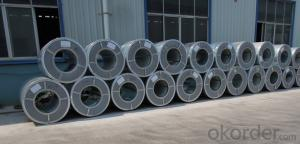 Galvanized Steel Coil  Hot Dipped ss400 CNBM