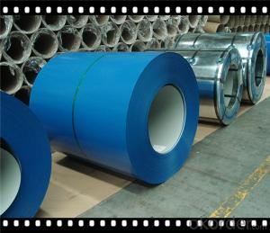 Prepainted Galvanized Steel Coil New Arrival Made in China CNBM