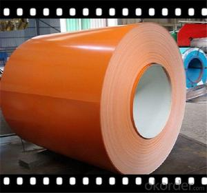 Prepainted Galvanized Steel Coil for Home Appliance Steel CNBM