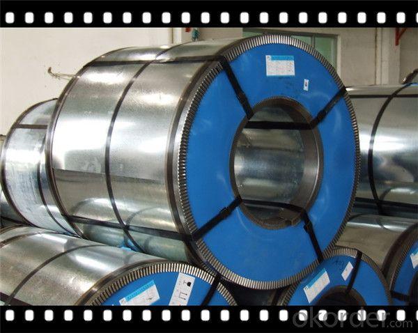 Zinc Coating 30g~ 275g Prepainted Galvanized Steel Coil PPGI Coil  CNBM