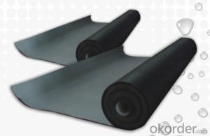 EPDM Coiled Rubber Waterproof Membrane for Roofs/Ponds/Basement