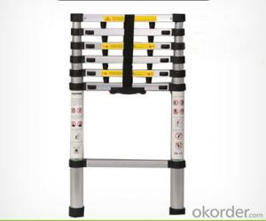 Aluminum Telescopic Ladder,Portable and Hot Sale