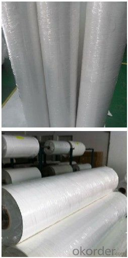 SPC-31 Solar Backsheets for PV Module . SPC TPE TPT. White Black.Hot Sales. High Quality.