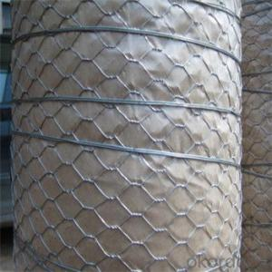 Galvnized Wire Mesh Hot Dipped and Electro Galvanized Really Factory
