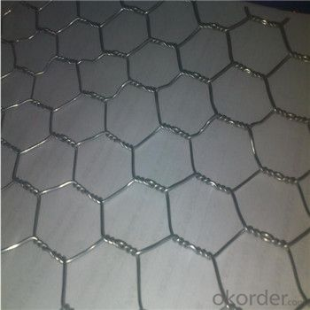 Galvnized Wire Mesh Best Seller Galvanized Welded Wire Mesh High Quality