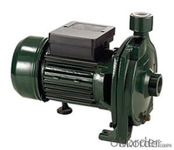 CPm Series Peripheral Centrifugal Water Pump