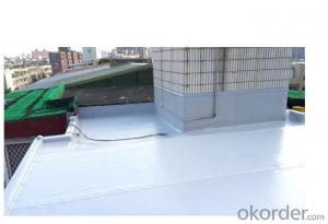 PVC Roofing Waterproof Membrane/Professional Waterproof Membrane