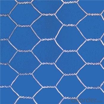 Galvanized Steel Wire Mesh PVC Galvanized Wire High Quality