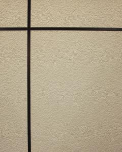 Environment-Friendly Exterior Wall Coating