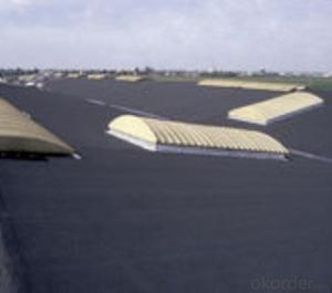 SBS Membrane Smooth for Waterproof System