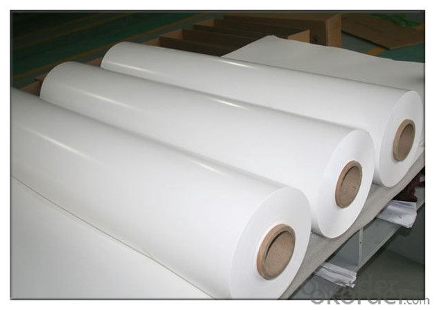 S-TPE-300 Solar Module Backsheet 998*0.3mm White and Black TPE PPE TPT Hot Sales. High Quality.