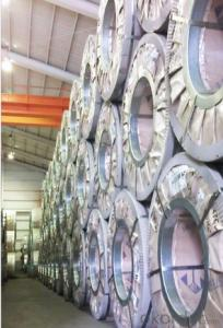 Type D  A653 Hot-Dip Galvanized Steel Coil CNBM