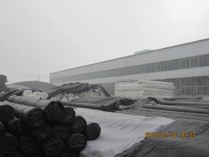 LDPE Geomembranes with Thickness of 1.0mm