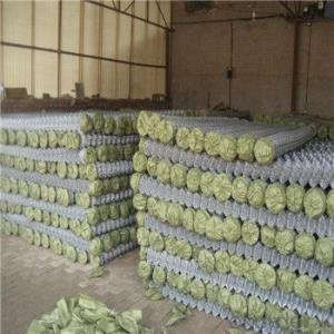 Chain Link Wire Mesh Fence High Quality Galvanize and PVC Coated