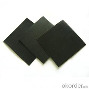 Waterproof Geomembrane /Liner/ Sheet with High Tensile Manufacturer