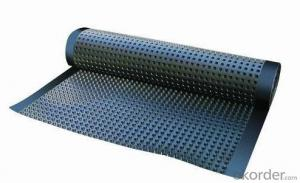 Drainage Composite Geonet Tri-dimension for Drainage