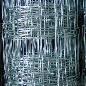 Grassland Fence/Professional Manufacture/Farm Field Fence