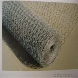 Hexagonal Wire Mesh Chicken Wire Netting Galvanized PVC Good Quality