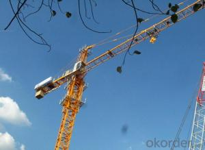 Tower Crane of TC4807 With Jib 48M and 0.7Ton Tip Load Topless