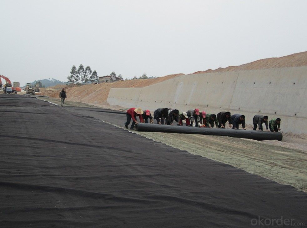 PP Needle Punched Nonwoven Geotextile for Highway Construction