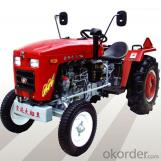 Agricultural Tractor JINMA-250-504D Best Seller