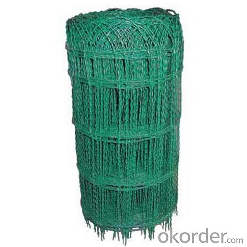 Border Fence/PVC Coated Wire wigh High Quality