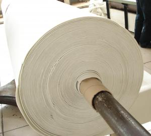 Needle Punched Coconut Coir Fibre Sheet for Mattress or Geotextile