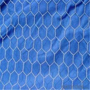 Hexagonal Wire  Mesh Chicken Netting GI PVC Wire Mesh 1/2