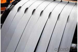 Galvanized Steel Coil/Hot Dip Galvanized Steel Strips Coil
