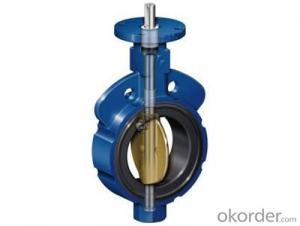 Butterfly Valve(304/316L TC Vlamp/Thread/Male-Female Connection CNC Machine