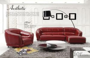 Living Room Sofa Furniture of Leisure Style