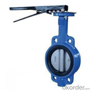 Butterfly Valve DN150 Wafer Double Eccentric