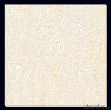 Polished Porcelain Tile The Soluble Salt white Color CMAXSB0647