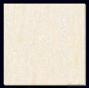 Polished Porcelain Tile The Soluble Salt white Color CMAXSB0647