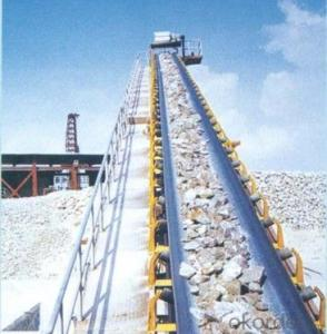 Chemical Resistant Conveyor Belt  CMAX CNBM