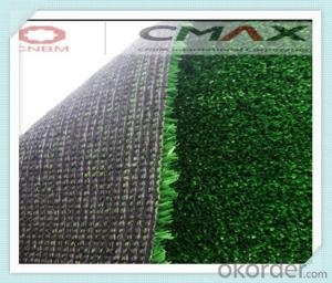 Play Mat With Artificial Grass Made in China with CE