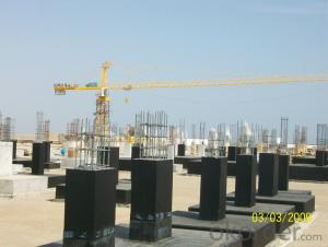 Tower Crane CNBM CMAX with Reasonable Price for Sale