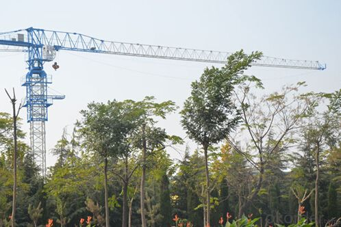 Toples Tower Crane TCP6040 With Jib length of  60M