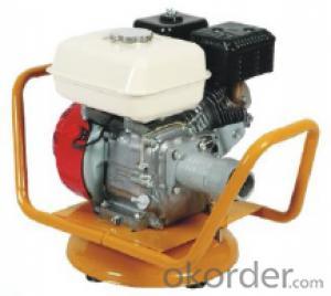 Electric Type Vibrator Eccentric International Vibrator