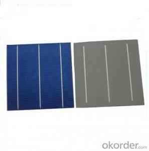 PolyCrystalline Silicon Solar Cell 3 Bus Bars  Alkaline