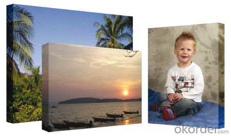 Thin Waterproof Printed Matte 220gsm Polyester Wholesale Stretched Canvas