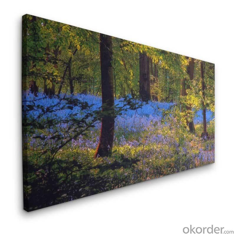 Wrapped Printed Canvas Printing with/without Frame for Decoration