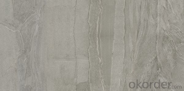 Glazed Porcelain Tile Cement Series CT6000