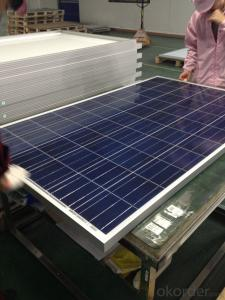 Polycrystalline Solar Panels-55W-Apply to Small Solar System