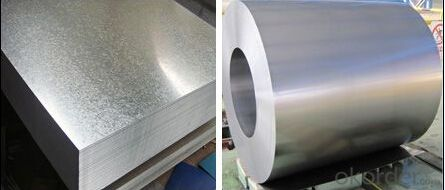 Hot-Dip Galvaniume Steel Sheet of Every Size