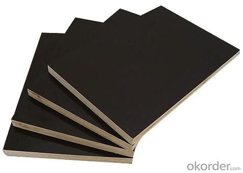 Black Color  Finger Jointed Core Film Faced Plywood