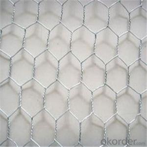 Hexagonal Wire Mesh Chicken Wire Netting Galvanized 3/8