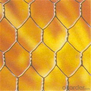 Hexagonal Wire Mesh Chicken Wire Netting Galvanized 3/8