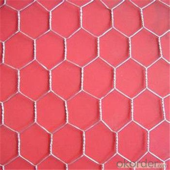 Hexagonal Wire Mesh Chicken Wire Netting Galvanized PVC Hot Seller