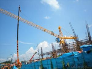Tower Cranes Series 3ton Self-raising Electric QTZ31.5
